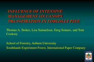 INFLUENCE OF INTENSIVE MANAGEMENT ON CANOPY TRANSPIRATION IN LOBLOLLY PINE