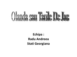 Echipa : Radu Andreea Stati Georgiana
