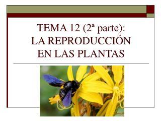 TEMA 12 (2� parte):  LA REPRODUCCI�N  EN LAS PLANTAS