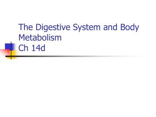 The Digestive System and Body Metabolism Ch 14d
