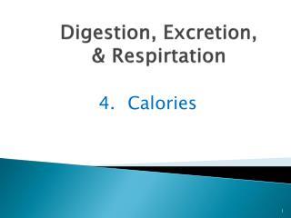 Digestion, Excretion, &  Respirtation