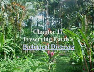 Chapter 17: Preserving Earth�s  Biological Diversity