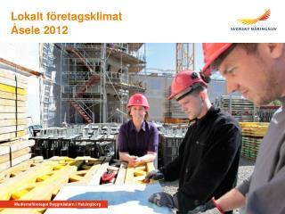 Åsele 2012
