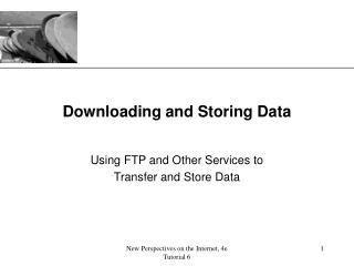 Downloading and Storing Data