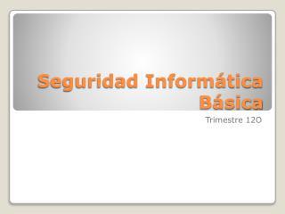 Seguridad Inform�tica B�sica