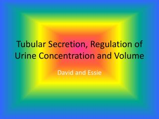 Tubular Secretion, Regulation of Urine Concentration and Volume
