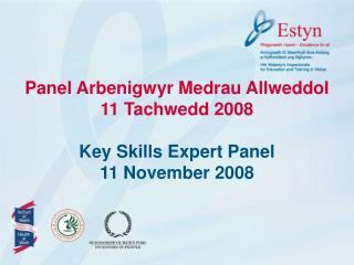Panel Arbenigwyr Medrau Allweddol  11 Tachwedd 2008  Key Skills Expert Panel 11 November 2008