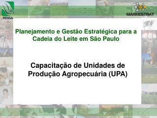 Planejamento e Gestão Estratégica para a Cadeia do Leite em São Paulo