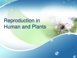 Reproduction in  Human and Plants