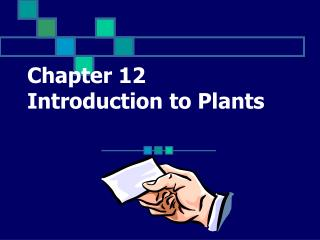Chapter 12  Introduction to Plants