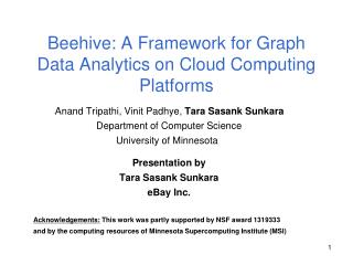 Beehive: A Framework for Graph Data Analytics on Cloud Computing Platforms