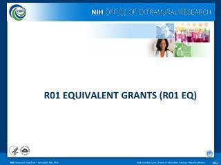 R01 EQUIVALENT GRANTS (R01 EQ)