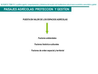 BLOQUE IV. TEMA 10. La pol tica agraria: comportamientos y din micas del mundo rural mediterr neo ante el marco econ mic
