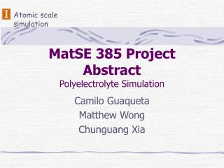 MatSE 385 Project Abstract Polyelectrolyte Simulation