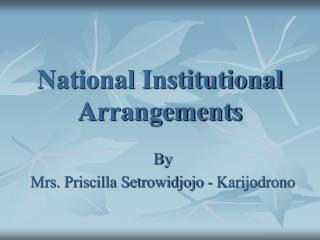 National Institutional Arrangements