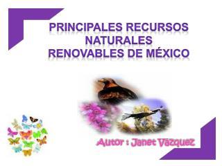 Autor : Janet Vázquez