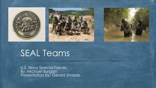 SEAL Teams