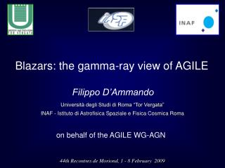 Blazars: the gamma-ray view of AGILE