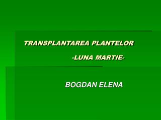 TRANSPLANTAREA PLANTELOR                           -LUNA MARTIE-