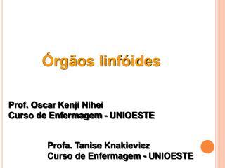 Órgãos linfóides
