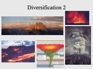 Diversification 2