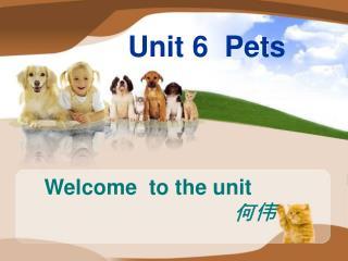 Unit 6  Pets