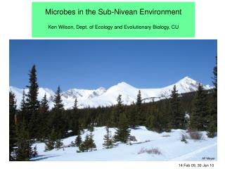 Microbes in the Sub-Nivean Environment Ken Wilson, Dept. of Ecology and Evolutionary Biology, CU
