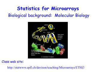 Statistics for Microarrays