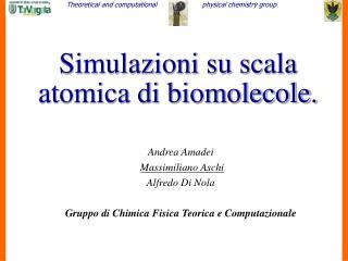 Simulazioni su scala atomica di biomolecole.