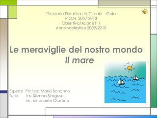 Le meraviglie del nostro mondo Il mare Esperto  Prof.ssa Maria  Bonanno