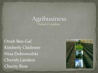 Agribusiness