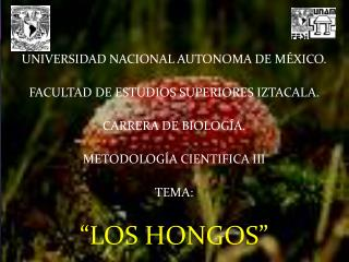 UNIVERSIDAD NACIONAL AUTONOMA DE MÉXICO. FACULTAD DE ESTUDIOS SUPERIORES IZTACALA.