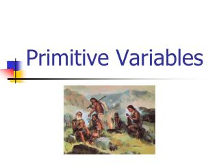 Primitive Variables