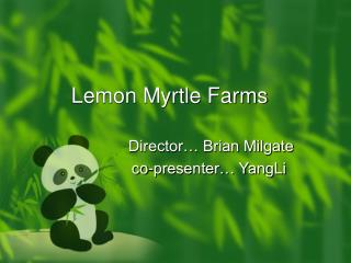 Lemon Myrtle Farms