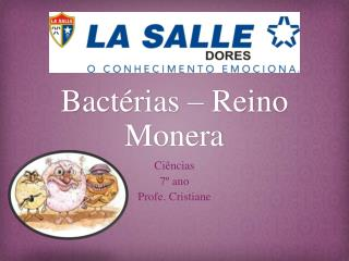 Bactérias – Reino Monera