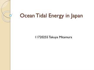 Ocean  T idal Energy in Japan