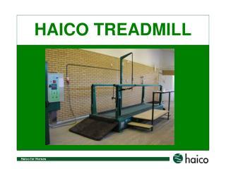 HAICO TREADMILL