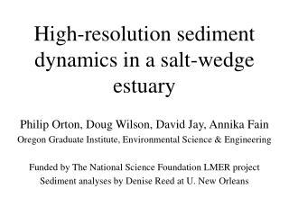 High-resolution sediment dynamics in a salt-wedge estuary