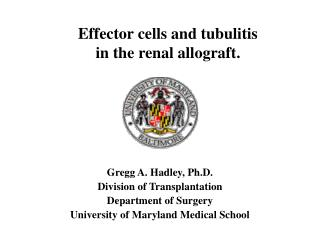 Gregg A. Hadley, Ph.D. Division of Transplantation  Department of Surgery