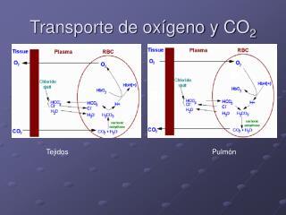 Transporte de oxígeno y CO 2