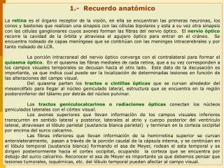 1.-  Recuerdo anatómico