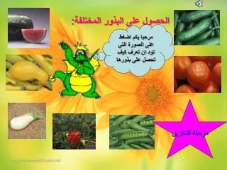 الحصول على البذور المختلفة: