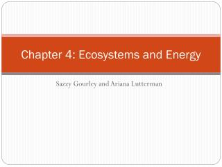 Chapter 4: Ecosystems and Energy