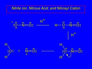 Nitrite Ion, Nitrous Acid, and Nitrosyl Cation