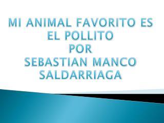 MI ANIMAL FAVORITO ES  EL  POLLITO POR SEBASTIAN MANCO SALDARRIAGA