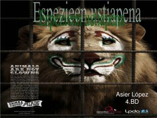 Asier López 4.BD