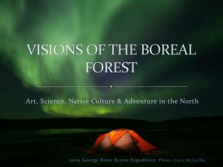 VISIONS OF THE BOREAL FOREST
