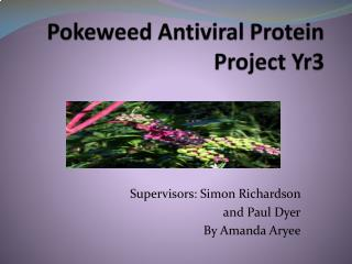 Pokeweed Antiviral Protein Project Yr3