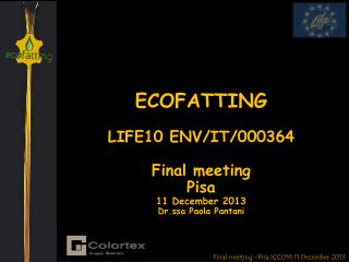 Final meeting –Pisa ICCOM 11 December 2013