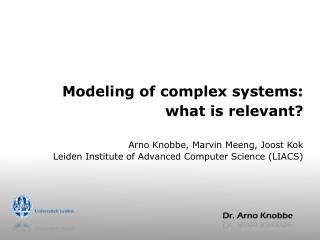 Modeling of complex systems: what is relevant?
